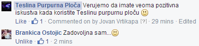 Teslina Ploca i Teslin disk - Iskustvo Brankica