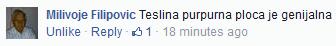 Teslina Ploca i Teslin disk - Iskustvo Milivoje